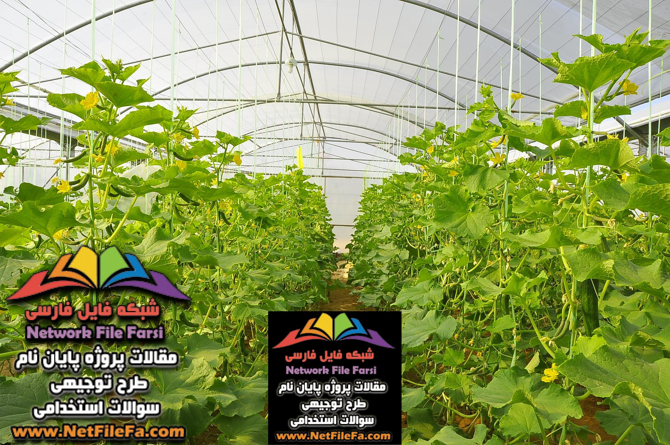 طرح توجیهی تولید محصولات خارج از فصل در گلخانه