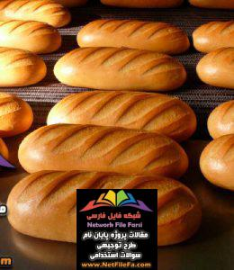 طرح توجیهی تولید نان صنعتی | فنی ، اقتصادی و مالی